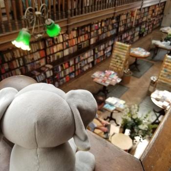 Daunt Books2